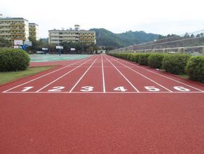 塑胶跑道、PU运动场